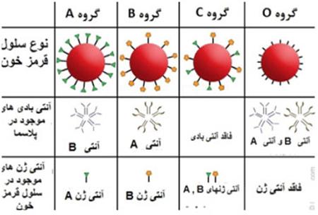 سیستم Rh گروه خونی