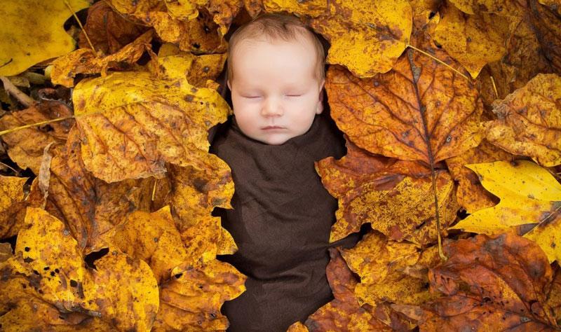 بچهدار شدن در فصل پاییز